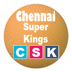 IPL Chennai Super Kings Squad 2015