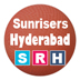 IPL Sunrisers Hyderabad squad 2015
