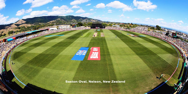 saxton oval nelson